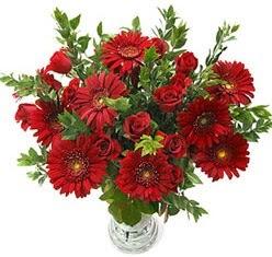 5 adet kirmizi gül 5 adet gerbera aranjmani  Balıkesir hediye çiçek yolla