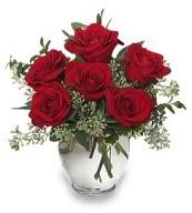 Vazo içerisinde 5 adet kırmızı gül  Balıkesir çiçekçi mağazası