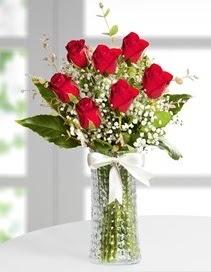 Cam vazoda 7 adet kırmızı gül  Balıkesir çiçek , çiçekçi , çiçekçilik