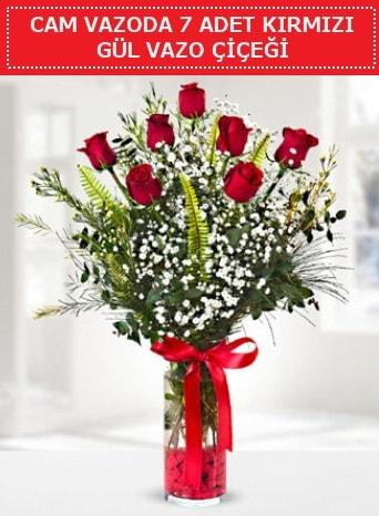 Cam vazoda 7 adet kırmızı gül çiçeği  Balıkesir çiçek gönderme sitemiz güvenlidir